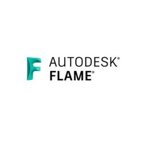 Flare 2021 Commercial New Multi-user ELD Annual Subscription