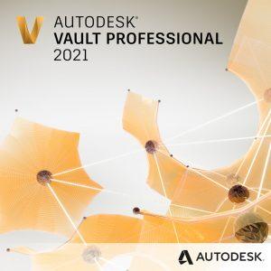 vault professional 2021 badge 1024px